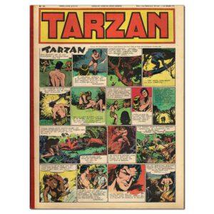 Tarzan – Bundeling 1